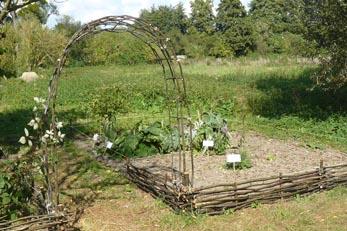 Jardin-medieval-JeP14