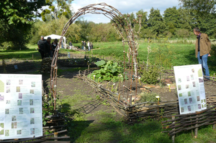 Jardin-potager